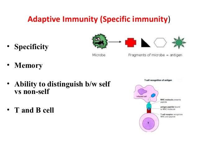 types of immunity