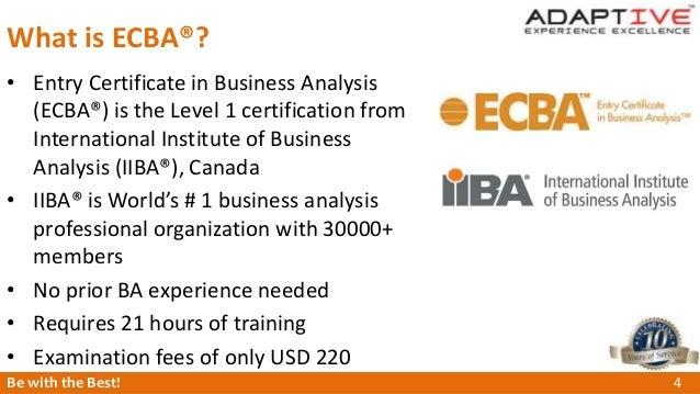 Adaptive industry relevant BA certification - ECBA