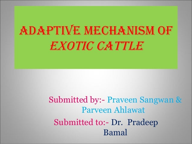 ADAPTIVE MECHANISM of EXoTIC CATTLE Submitted by:- Praveen Sangwan & Parveen Ahlawat Submitted to:- Dr. Pradeep Bamal