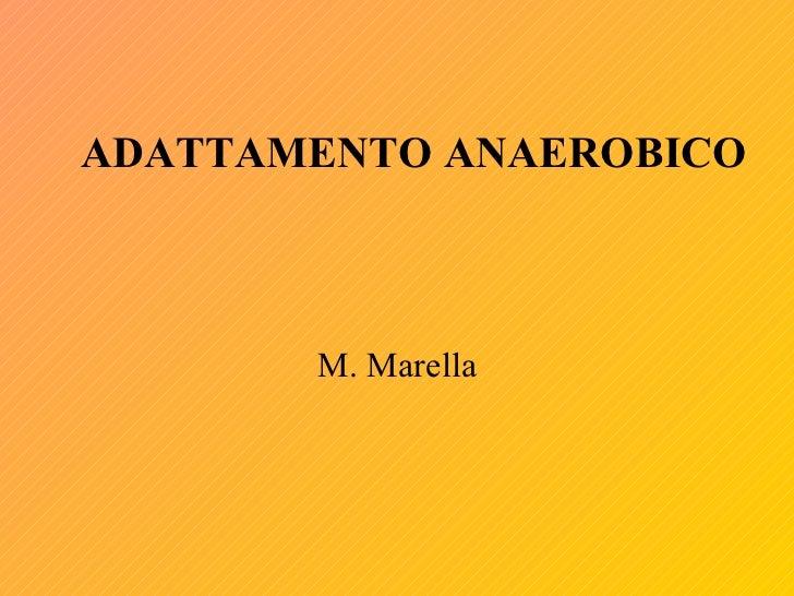 Adattamento anaerobico