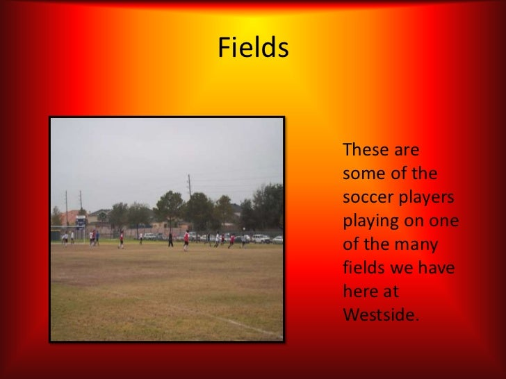 Fields         These are         some of the         soccer players         playing on one         of the many         fie...