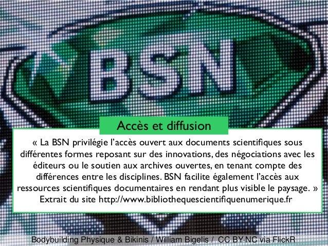 «La BSN privilégie l'accès ouvert aux documents scientifques sous différentes formes reposant sur des innovations, des né...