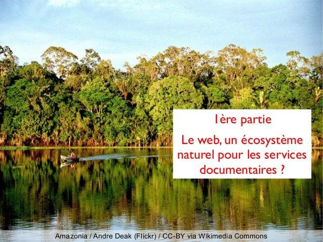 Amazonia / Andre Deak (Flickr) / CC-BY via Wikimedia Commons 1ère partie Le web, un écosystème naturel pour les services d...