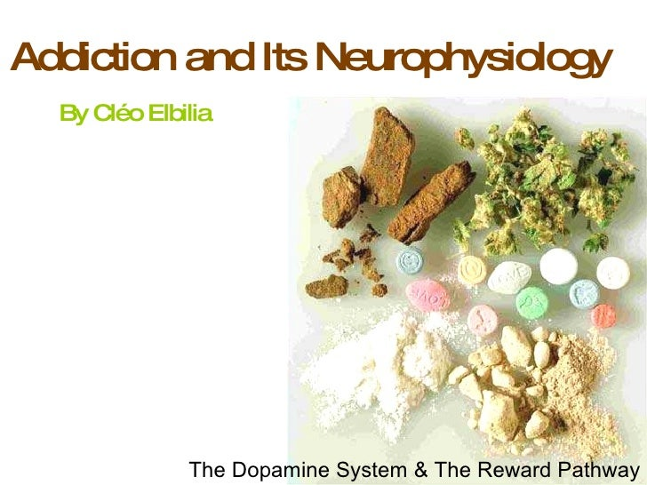 Addiction and Its Neurophysiology  By Cl éo Elbilia The Dopamine System & The Reward Pathway