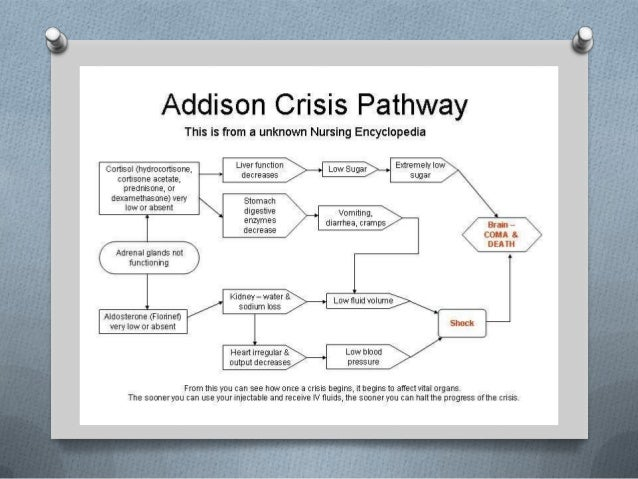 Addison's disease final ppt