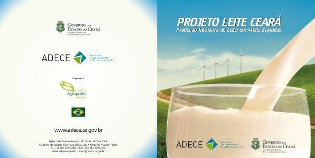 PROJETO de Leite em Áreas Irrigadas                                                                         Produção Inten...
