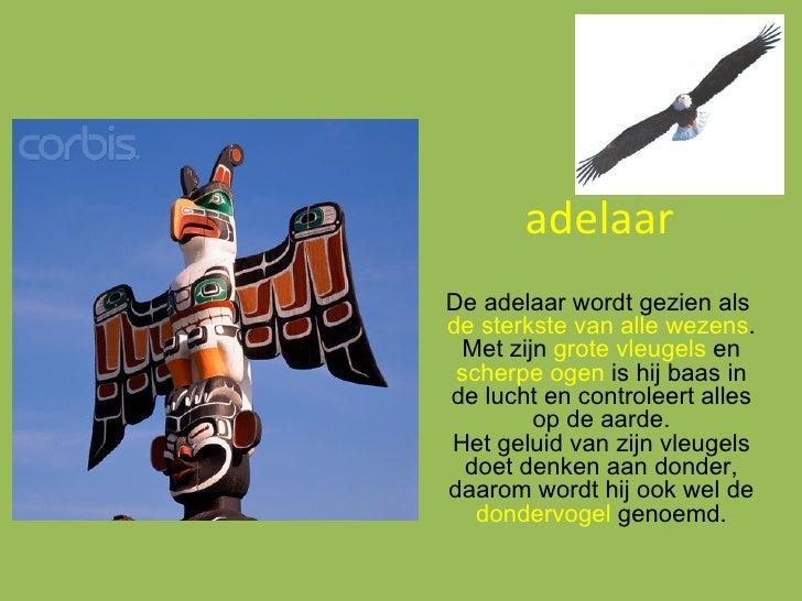 adelaar De adelaar wordt gezien als  de sterkste van alle wezens . Met zijn  grote vleugels  en  scherpe ogen  is  hij baa...