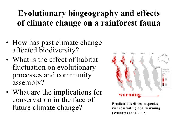 the effects of losing rainforest This impacts people's livelihoods and threatens a wide range of plant and animal  species we're losing 187 million acres of forests annually, equivalent to 27  soccer  deforestation is a particular concern in tropical rainforests because  these.