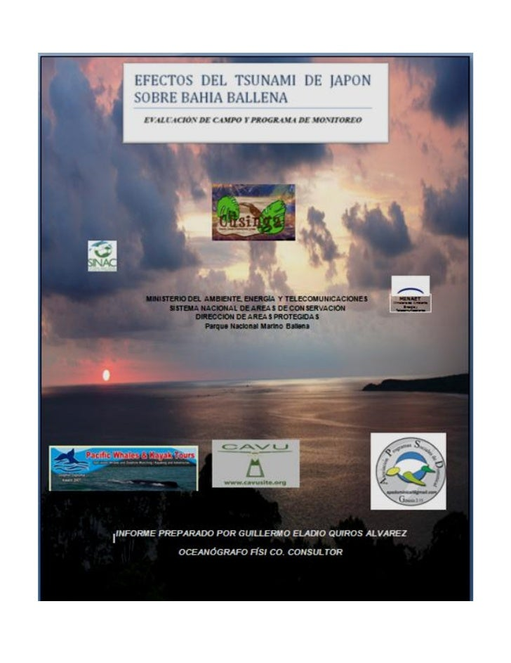 EFECTOS DEL TSUNAMI EN BAHÍA BALLENA      Adendum 4                                                          Vista aérea d...
