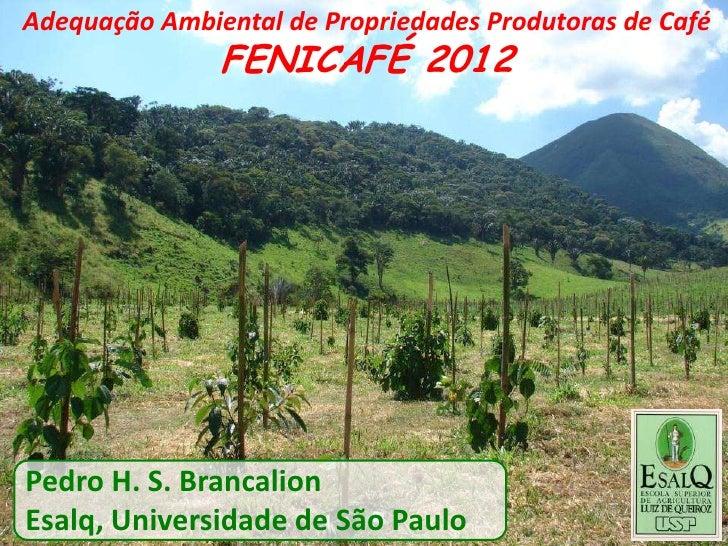 Adequação Ambiental de Propriedades Produtoras de Café               FENICAFÉ 2012Pedro H. S. BrancalionEsalq, Universidad...