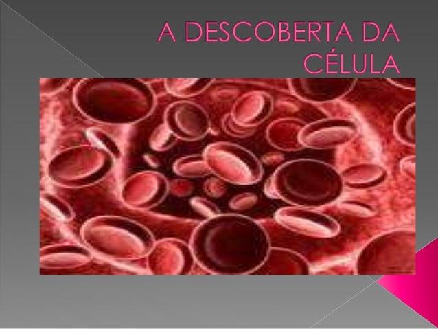  Citologia é o ramo da biologia que  estuda as células no que diz respeito à  sua estrutura, suas funções e sua  importân...
