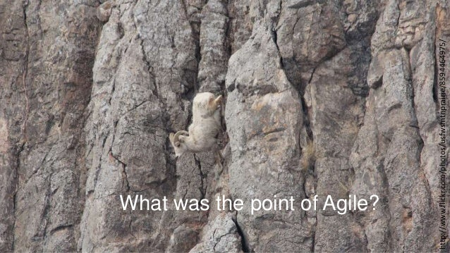 http://www.flickr.com/photos/usfwsmtnprairie/8594464975/  What was the point of Agile?
