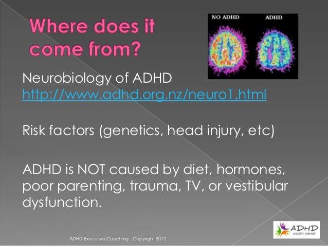 ADHD Executive Coaching - Copyright 2012