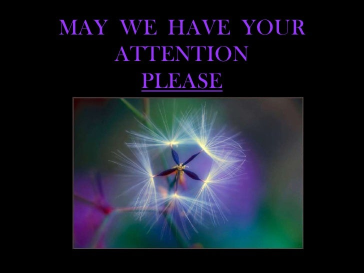 MAY  WE  HAVE  YOUR  ATTENTIONPLEASE<br />