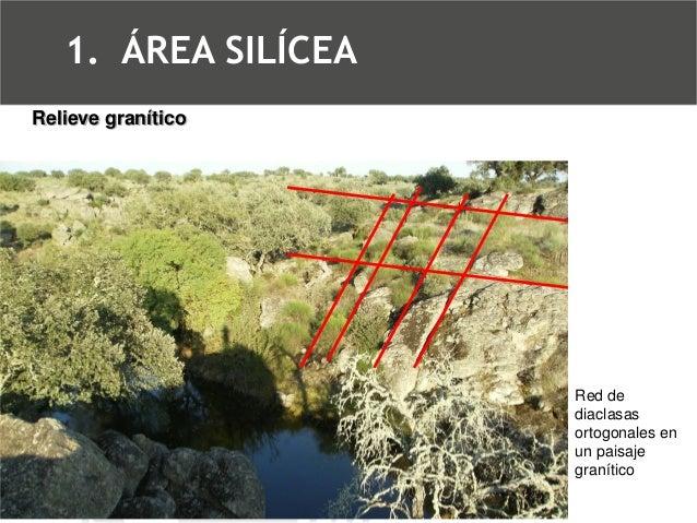Diaclasas en un paisaje graníticoRelieve granítico  1.ÁREA SILÍCEA