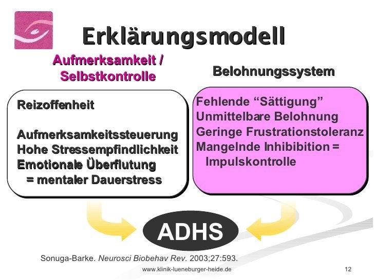 Erklärungsmodell  Aufmerksamkeit / Selbstkontrolle Belohnungssystem Reizoffenheit Aufmerksamkeitssteuerung Hohe Stressempf...