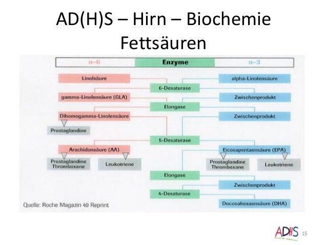 AD(H)S – Hirn – Biochemie Fettsäuren 15