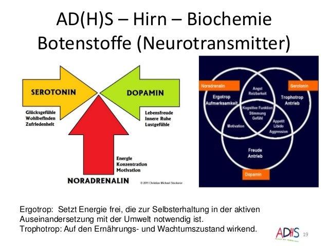 AD(H)S – Hirn – Biochemie Botenstoffe (Neurotransmitter) Ergotrop: Setzt Energie frei, die zur Selbsterhaltung in der akti...