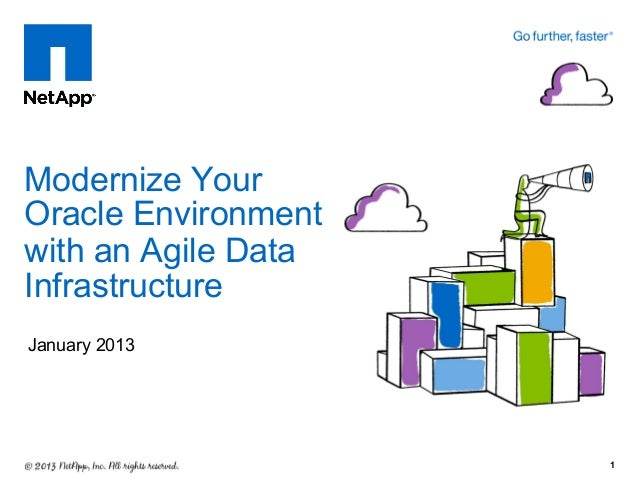 Modernize YourOracle Environmentwith an Agile DataInfrastructureJanuary 2013                     1