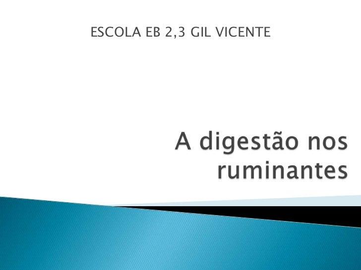 ESCOLA EB 2,3 GIL VICENTE<br />A digestão nos ruminantes<br />