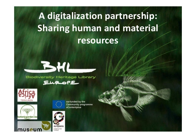 A digitalization partnership: Sharing human and material resources