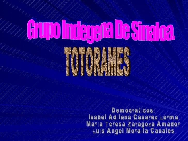 Grupo Indegena De Sinaloa. TOTORAMES Democraticos: Isabel Adilene Casarez Lerma Maria Teresa Zaragoza Amador Luis Angel Mo...