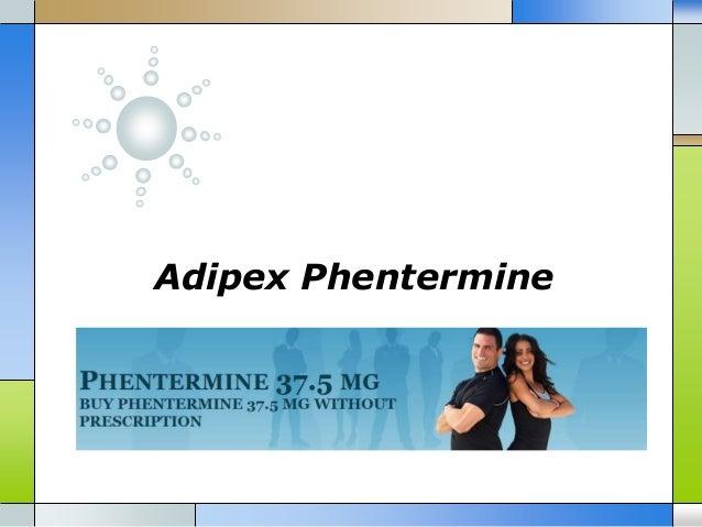 Adipex Phentermine