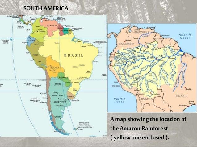 Amazon rainforest 4 a map showing gumiabroncs Choice Image