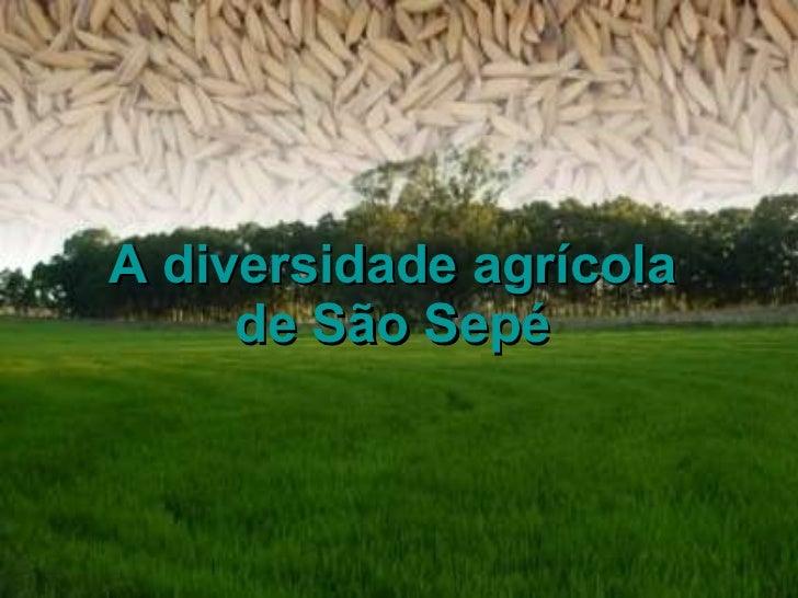 A diversidade agrícola de São Sepé