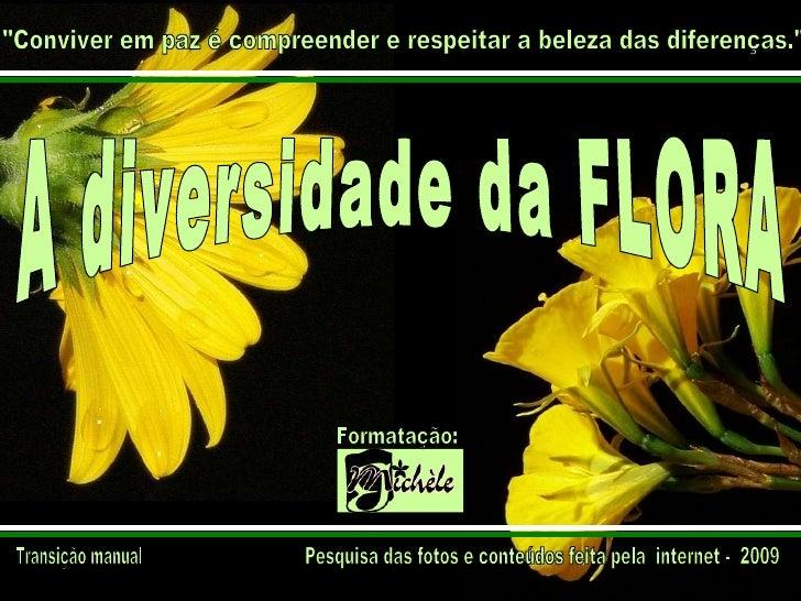 """A diversidade da FLORA Pesquisa das fotos e conteúdos feita pela  internet -  2009 """"Conviver em paz é compreender e r..."""
