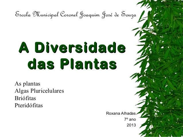 A DiversidadeA Diversidade das Plantasdas Plantas Roxana Alhadas 7º ano 2013 Escola Municipal Coronel Joaquim José de Souz...