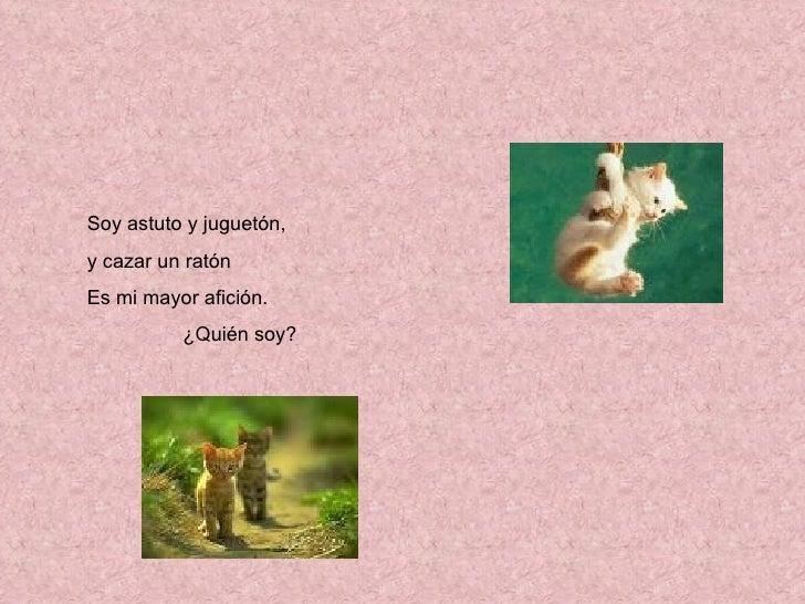 Adivinanzas de animales - Como cazar un raton en un piso ...