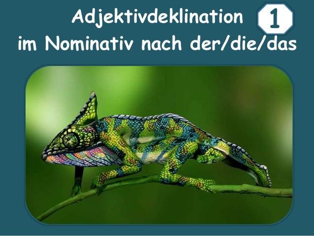 Adjektivdeklination im Nominativ nach der/die/das 1