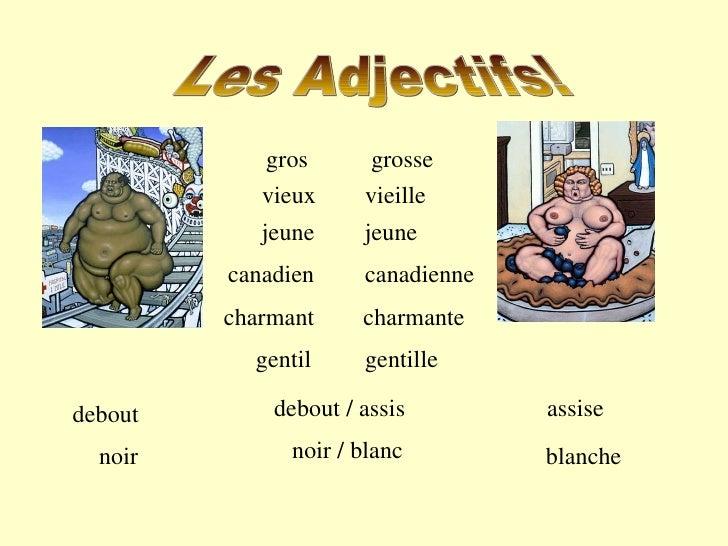 Les Adjectifs! gros vieux canadien debout / assis noir / blanc charmant gentil grosse vieille jeune jeune canadienne charm...