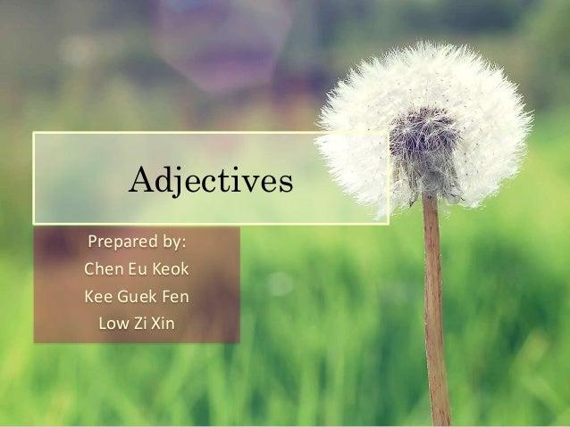 Adjectives  Prepared by:  Chen Eu Keok  Kee Guek Fen  Low Zi Xin