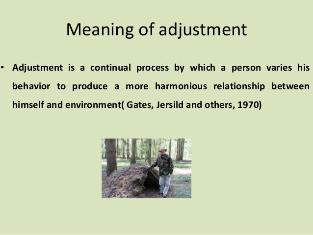 adjustment conflict and frustration