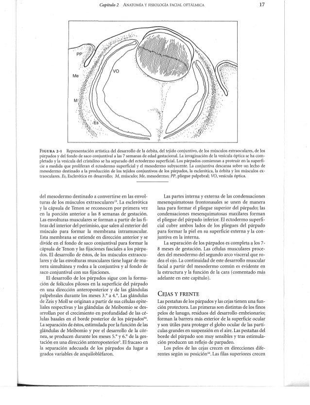 Adler fisiología del ojo