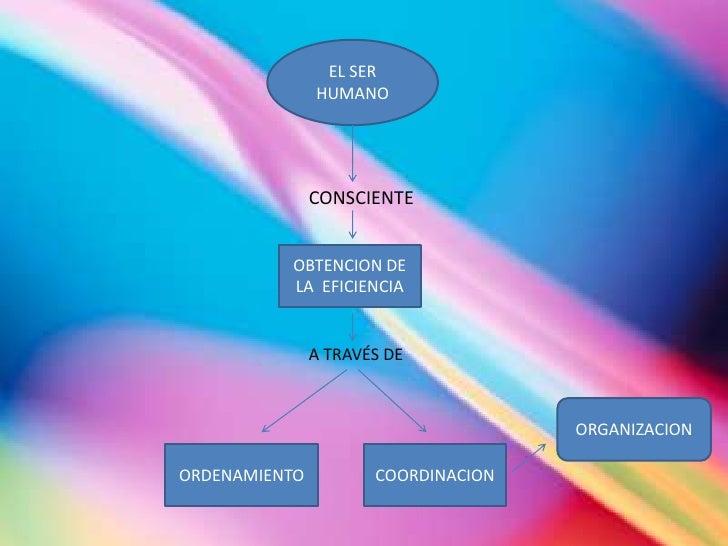 EL SER HUMANO<br />CONSCIENTE<br />OBTENCION DE  LA  EFICIENCIA<br />A TRAVÉS DE<br />ORGANIZACION<br />ORDENAMIENTO<br />...