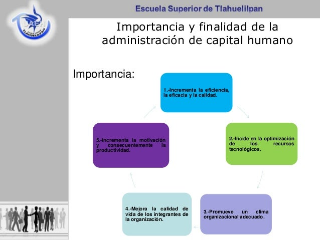 Administracion de capital humano for Importancia de la oficina