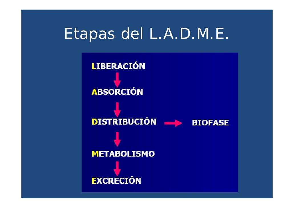 Administracion de medicamentos por via oral - M a interiorismo cb granada ...