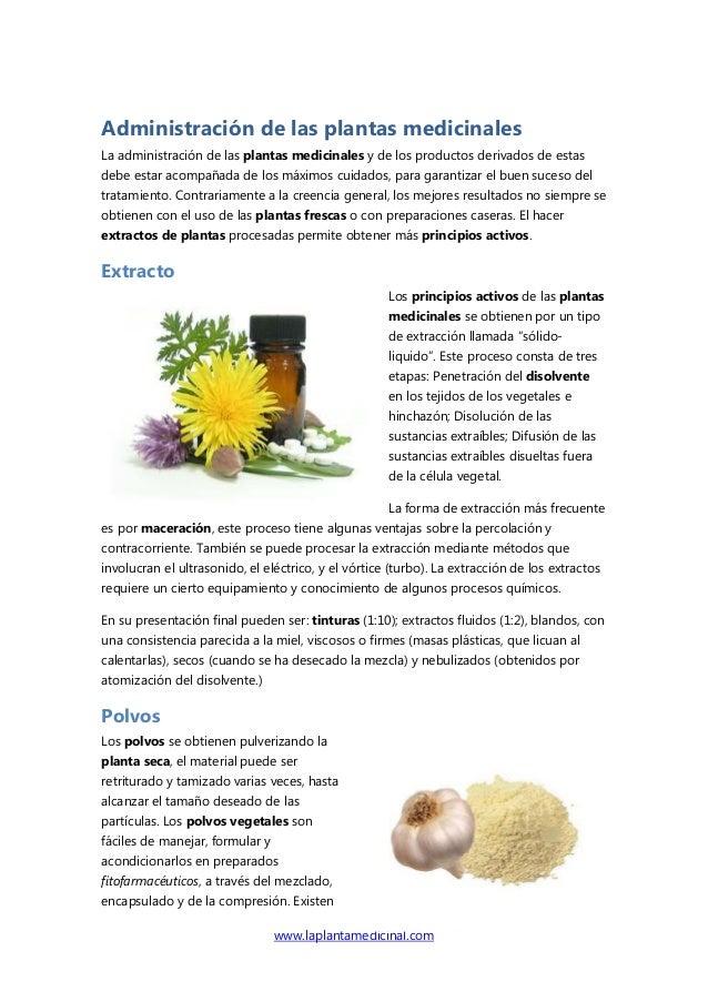 www.laplantamedicinal.comAdministración de las plantas medicinalesLa administración de las plantas medicinales y de los pr...