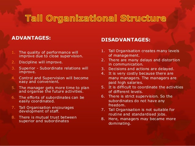 tall organizational structure advantages and disadvantages