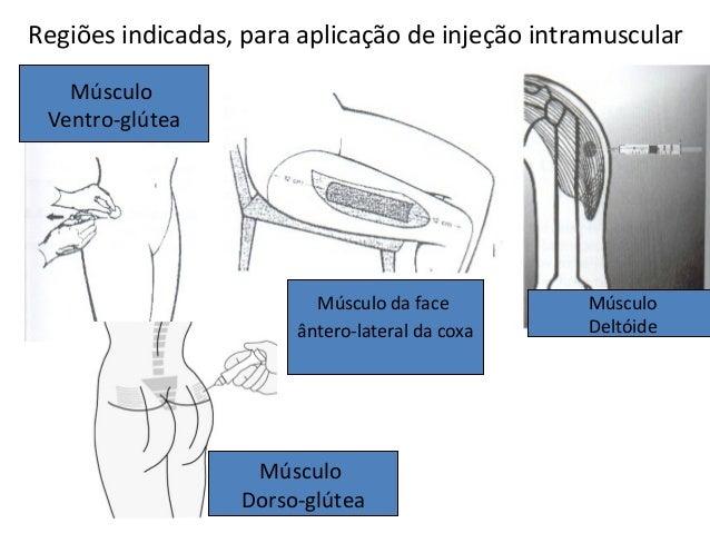 Músculo Deltóide Músculo da face ântero-lateral da coxa Músculo Ventro-glútea Músculo Dorso-glútea Regiões indicadas, para...