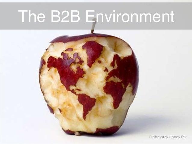 The B2B EnvironmentPresented by Lindsey Fair
