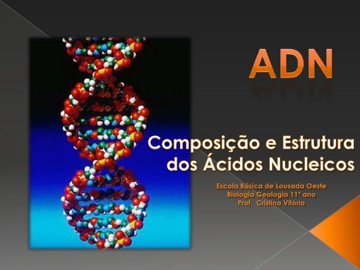 ADN<br />Composição e Estrutura dos Ácidos Nucleicos<br />Escola Básica de Lousada Oeste<br />Biologia Geologia 11º ano<br...