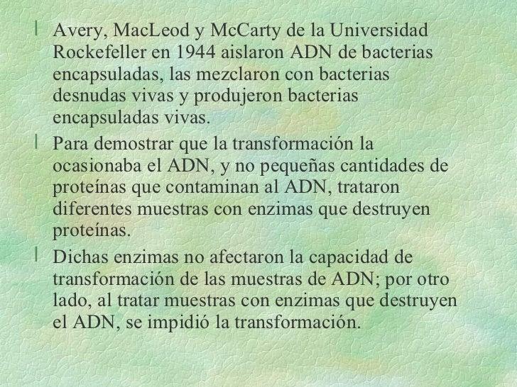 <ul><li>Avery, MacLeod y McCarty de la Universidad Rockefeller en 1944 aislaron ADN de bacterias encapsuladas, las mezclar...