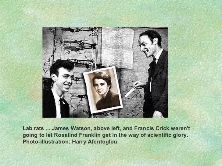 Lab rats ... James Watson, above left, and Francis Crick weren't going to let Rosalind Franklin get in the way of scientif...