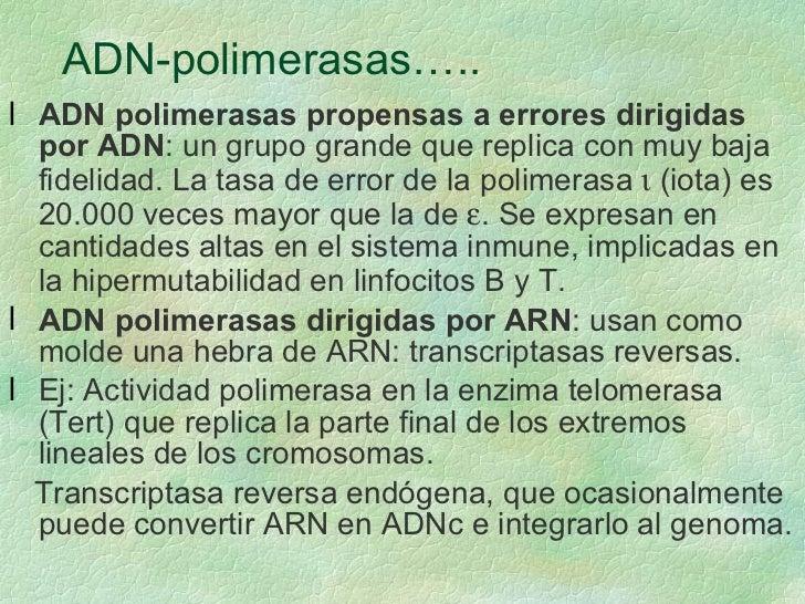 ADN-polimerasas….. <ul><li>ADN polimerasas propensas a errores dirigidas por ADN : un grupo grande que replica con muy baj...
