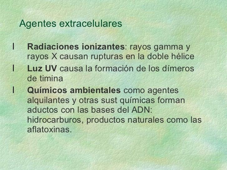 Agentes extracelulares <ul><li>Radiaciones ionizantes : rayos gamma y rayos X causan rupturas en la doble hélice </li></ul...