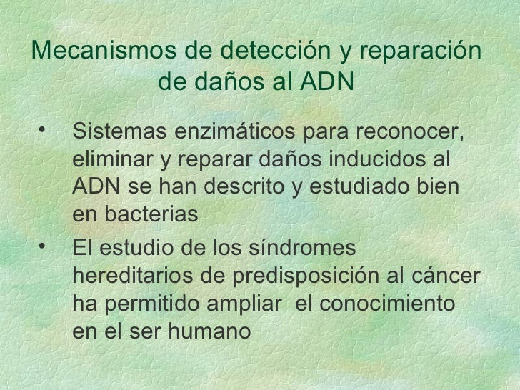 Mecanismos de detección y reparación de daños al ADN <ul><li>Sistemas enzimáticos para reconocer, eliminar y reparar daños...